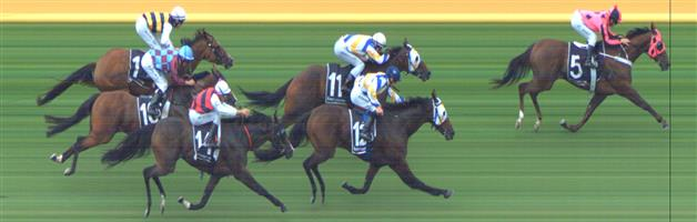 Sandown Race 8 No.8 Savaheat @ $7.50 (0.77 UNIT WIN)   Result : Non Qualifier - Unplaced at SP $12.00  Sandown Race 8 No.13 Cullingworth @ $26 - this isn't the worst here and we have rated much less than this. You may want to take a small e/w saver here, not official.   Result : Non Qualifier - Unplaced at SP $51.00