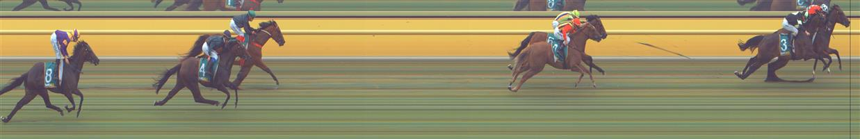 ARARAT Race 3 No. 3 Lamington Drive @ $2.60 (1.5 UNITS WIN)   Result :  2nd  at SP $3.60. Coming from just behind the winner, Run By Night ($3.00 SP) who settled in the lead, loomed up in the straight but just couldn't get past Run By Night missing by about a head on the line. Outcome -1.50 Units.