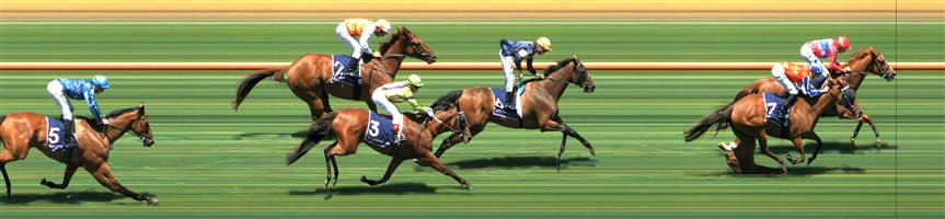 Flemington Race 2 No.3 Pleasuring @ $2.80 (1.5 UNITS WIN), Weir 1   Result : 4th at SP $3.90. Lead the majority of the race including by a length at the top of the straight though started putting in the short strides from around the 200m mark, overtaken at the 100m mark and ended up finish just outside of the placings. Outcome -1.50 Units  Flemington Race 2 No.5 Azurite @ $11 - watch price   Result : Non Qualifier – Unplaced at SP $11.00
