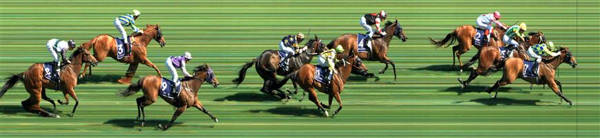 Flemington Race 7 No.6 Snitzkraft @ $12 - watch price   Result : Unplaced at SP $6.50. Settled in a share of the lead in the middle of the track. From the 200m mark as the pressure was applied, couldn't keep up its speed and got a bit wayward and dropped through the field to finish in 6th. Outcome -0.84 Units