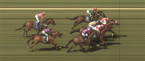 🏆🏆🏆🏆🏆🏆 Warrnambool Race 6 No.8 Lope De Field @ $9.50 - watch price   Result :  1st  at SP $6.50, Best Tote $7.60, Betfair $8.60. Settled outside the leader with no pace in the race and in the finish dominated by the leaders, Lope De Field was too strong winning by a head on the line. Outcome +5.88 Units