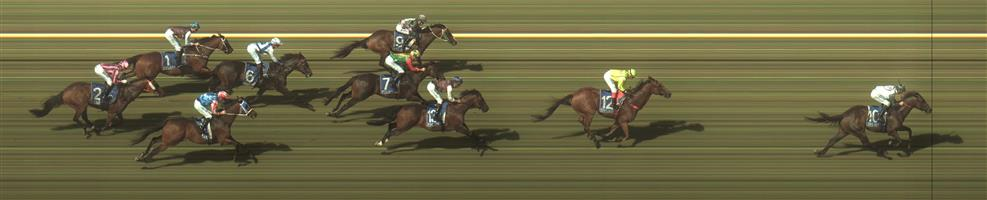 Warrnambool Race 8 No.13 Outroar @ $16 - watch price   Result : Non Qualifier - 3rd at SP $31.00