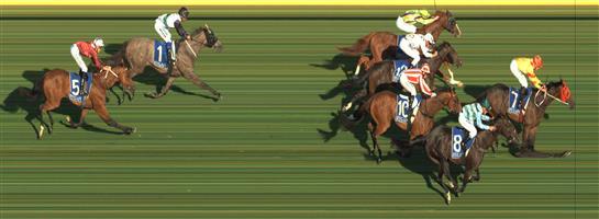 Pakenham Race 2 No.5 Kilgour @ $15 - watch price   Result : Non Qualifier - Unplaced at SP $13.00
