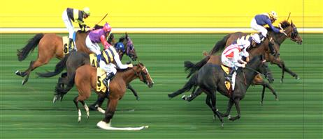 🏆🏆🏆🏆🏆 M.VALLEY (N) Race 2 No. 3 The Gatting Ball @ $3.40 (1.5 UNITS WIN)   Result :  1st  at SP $3.70, Best Tote $3.50, Betfair $4.76. Pushed forward off a slow speed was the winning move early, straighted up one length in front and managed to hold on for victory. Outcome +5.10 Units  M.VALLEY (N) Race 2 No. 5 San Remo @ $6.50 (0.91 UNIT WIN)   Result : 4th at SP $7.50. Settled fourth off the slow speed. Held ground in the straight though no match for the winner. Outcome -0.91 Units.