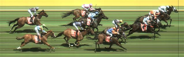 Caulfield Race 3 No.9 Indian Thunder @ $5.50 (1.12 UNITS WIN)   Result :  3rd  at SP $6.00. Coming from the tail of the field, great run in the straight finishing hard for a close up 3rd. Outcome -1.12 Units.