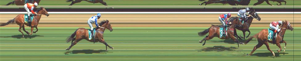 GREAT WESTERN Race 1 No. 1 Beauweevil @ $7 (0.84 UNIT WIN)   Result : Unplaced at SP $5.50. Always out the back, never a winning hope. Outcome -0.84 Units.