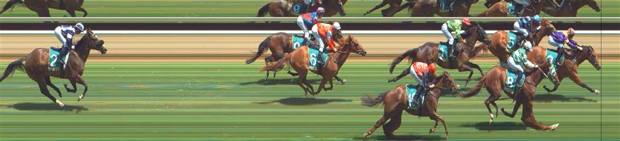 GREAT WESTERN Race 2 No. 6 Uno Ruby @ $12 - watch price   Result : Non Qualifier - Unplaced at SP $19.00