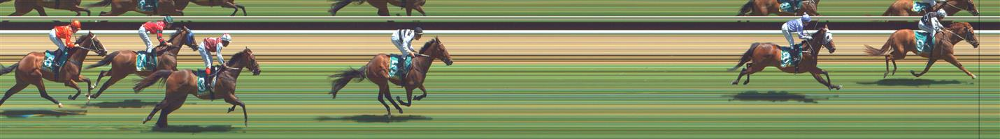 GREAT WESTERN Race 3 No. 5 Amon @ $67 - price unlikely   Result : Non Qualifier - 3rd at SP $21.00