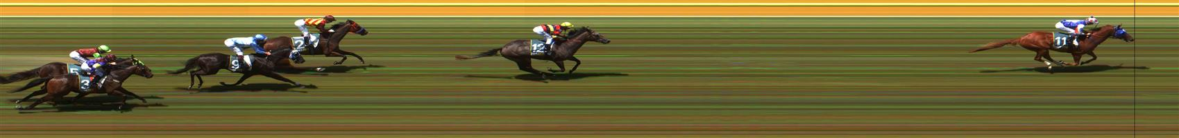 GEELONG Race 4 No. 6 Clap Chap @ $41 - price unlikely   Result : Non Qualifier - Unplaced at SP $26.00