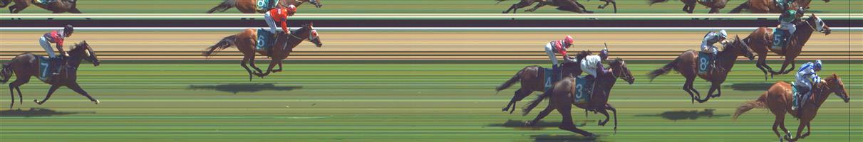 GREAT WESTERN Race 5 No. 6 Cheeky Reward @ $15 - watch price   Result : Non Qualifier - Unplaced at SP $11.00
