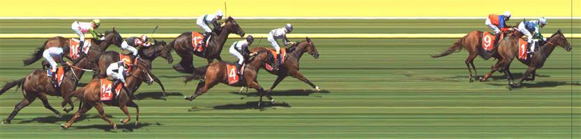 Sandown Race 5 No.11 Keysor @ $9 - watch price   Result : Non Qualifier - Unplaced at SP $9.50