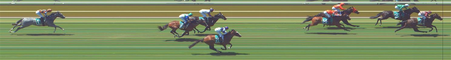 Kyneton Race 1 No.1 Absolut Artie @ $10 - watch price   Result : Non Qualifier - Unplaced at SP $10.00