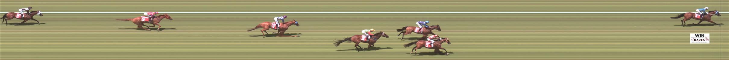 MORPHETTVILLE Race 1 No. 2 Azurite @ $2.60 (1.5 UNITS WIN)   Result :  3rd  at SP $2.30. Not happy with slow speed and made mid race move to sit outside the leader. On the turn, favourite kicked clear and Azurite couldn't match it and tired late to finish a close third. Outcome -1.50 Units.
