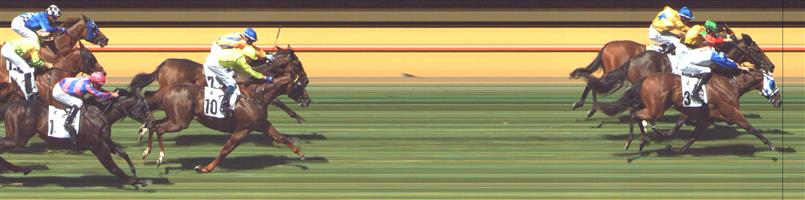 FLEMINGTON Race 5 No. 10 Write Your Name @ $10 - watch price   Result : Non Qualifier - 4th at SP $13.00