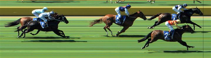 SEYMOUR Race 5 No. 3 Swiss Hero @ $4.50 (1.43 UNITS WIN)   Result:  Unplaced at SP $4.40. Always out the back, never a winning threat. Disappointing. Outcome -1.43 Units.