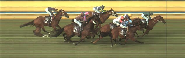 BENDIGO Race 8 No. 5 Saccharo @ $7 (0.84 UNIT WIN)   Result :  2nd  at SP $8.00. Coming from the back, as one of the widest runners and really flew home in the final 200m though need another 50m or so in order to claim victory. Outcome -0.84 Units.