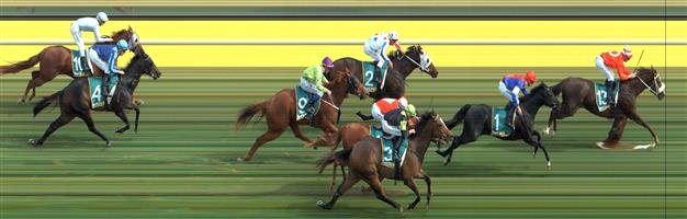 STAWELL Race 2 No. 4 Jack On The Rocks @ $4 (1.5 UNITS WIN)   Result : Unplaced at SP $3.00. Settled on the leaders back though on the turn when the whips were cracking the effort from Jack On The Rocks wasn't there and finished around midfield. Outcome -1.50 Units.