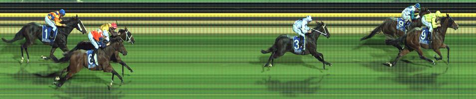 RACING.COM PARK Race 3 No. 10 Whitton Lane @ $7 (0.84 UNIT WIN)   Result:  Non Qualifier - Unplaced at SP $10.00