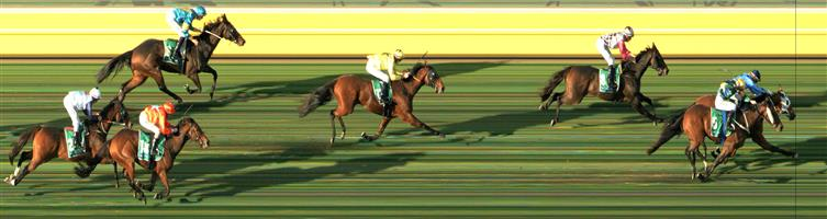 WARRNAMBOOL Race 9 No. 17 Skelton @ $7 (0.84 UNIT WIN)   Result : Unplaced at SP $5.50. After racing in the first half of the field, was dropped on the turn and finished in the last part of the field. Outcome -0.84 Units.