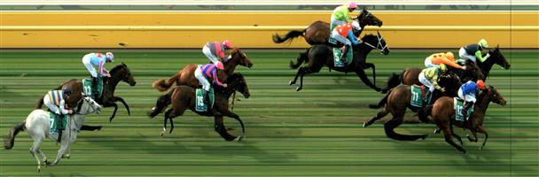 WARRNAMBOOL Race 2 No. 10 Three Legs In @ $5.50 (1.12 UNITS WIN)   Result :  3rd  at SP $6.50. After running outside the leader and having a small second burst of energy in the final 100m, just didn't have the pace in the final 200m to take out the race, going down by less than half a length. Outcome -1.12 Units.