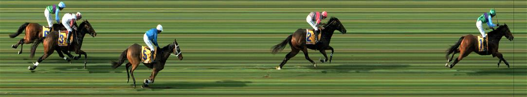 WARRNAMBOOL Race 7 No. 3 Bit Of A Lad @ $7.50 (0.84 UNIT WIN)   Result :  4th  at SP $4.60. In the Grand Annual over 5500m and in one of the great races in Australia, Bit Of A Lad settled midfield but didn't have the closing speed to catch the winner, Zed Em (SP $2.70). Outcome -0.84 Units.