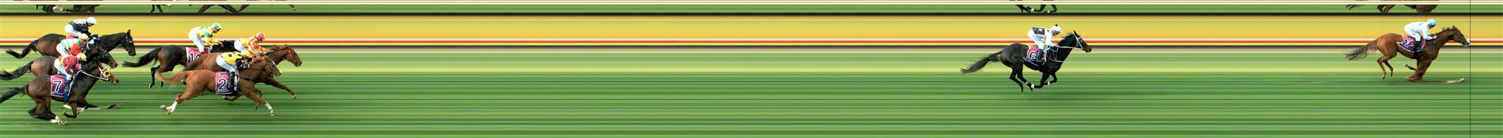 HORSHAM Race 2 No. 3 Done Good @ $3.50 (1.5 UNITS WIN)  Result: Unplaced at SP $5.50. Enjoyed a nice trail behind the leaders in the run but dropped out on the home turn as it was placed under pressure. Outcome -1.50 Units.