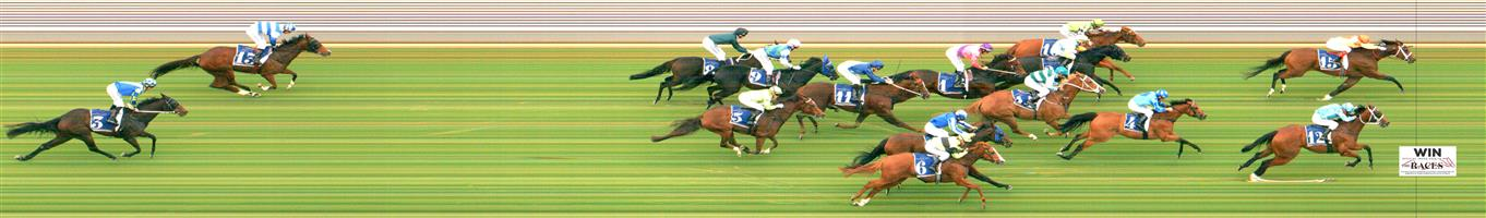 MORPHETTVILLE Race 5 No. 4 Clearly @ $11 - watch price   Result : Non Qualifier - 3rd at SP $16.00