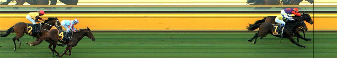 BAIRNSDALE Race 1 No. 4 Soldierofthebrave @ $3.50 (1.5 UNITS WIN)  Result: 3rd at SP $3.50. In a field of four, was beaten off on the turn and held ground in the straight though never a real winning hope. Outcome -1.50 Units.