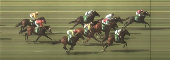 BENDIGO Race 2 No. 5 Thought Of That @ $11 - watch price  Result: Non Qualifier - 3rd at SP $14.00.