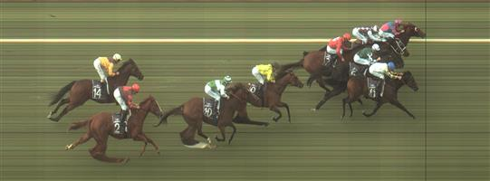 BENDIGO Race 4 No. 5 Yulong Patrol @ $4.40 (1.48 UNITS WIN)  Result: 4th at SP $5.00. Settled in third though lost a little ground on the turn and top of the straight. Did hit the line well though race was lost on the turn and top of the straight. Outcome -1.48 Units.