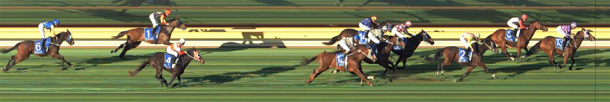 BENALLA Race 8 No. 14 American Summer @ $9.50 - watch price  Result: Non Qualifier - Unplaced at SP $10.00
