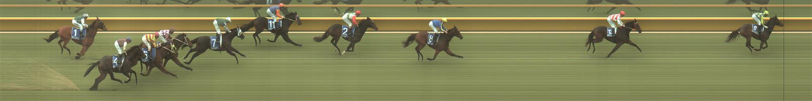 SEYMOUR Race 2 No. 8 Fancy Liquor @ $3.90 (1.5 UNITS WIN)  Result: 3rd at SP $5.00. Was behind the leader and winner on the turn, but the winner kicked clear on the turn and Fancy Liquor could only box on for third. Outcome -1.50 Units.