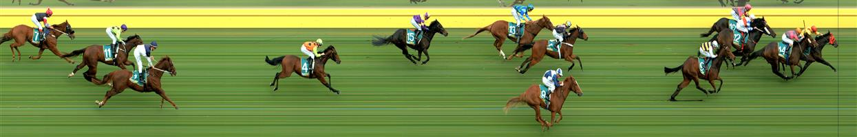 🏆🏆🏆🏆🏆Donald Race 2 No.6 Monarch Court @ $3.50 (1.5 UNITS WIN)  Result: 1st at SP $4.80, Best Tote $5.90, Betfair $5.12. Coming from third in the run, went up two wide on the turn and hit the lead with 200m to go but had chasers from everywhere on the track but was able to keep on pushing to finish first by about half a length on the line. Outcome +5.25 Units  Donald Race 2 No.9 Tigre Royale @ $11 - watch price  Result: Unplaced at SP $5.00. Coming from the tail of the field come down towards the outside rail and finished hard but had to make up too much ground and finished slightly better than midfield. Outcome -0.83 Units