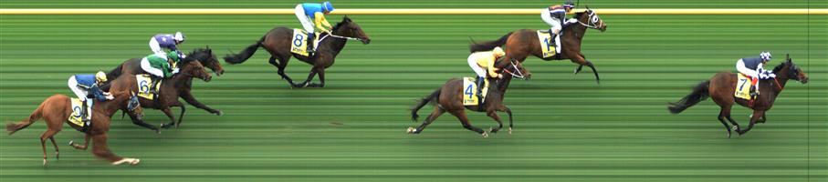 Caulfield Race 8 No.6 Villermont @ $11 - watch price  Result: Non Qualifier - Unplaced at SP $9.00