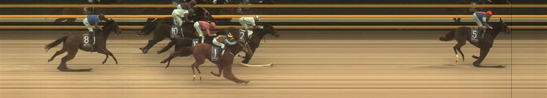 BALLARAT SYNTHET Race 7 No. 2 Greycliffe @ $3.70 (1.5 UNITS WIN)  Result: 2nd at SP $2.80. Settled in fourth and on the turn had the gaps open up for a clean run but was no match for the winner. Outcome -1.50 Units.  🏆🏆🏆🏆🏆🏆BALLARAT SYNTHET Race 7 No. 5 Buena Veloz @ $12 - watch price  Result: 1st at SP $7.00, Best Tote $7.80, Betfair $7.16. Coming from the tail in the seven horse field, was the widest on the turn and quickly came onto the screen to really break away from the field and win comfortably. Outcome +5.88 Units.  Hopefully a few were on the quinella which paid $11.20 and exacta $26.90 (both mid totes).