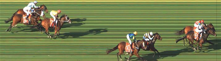 SANDOWN HILLSIDE Race 5 No. 15 Doroza @ $7.50 (0.84 UNIT WIN)  Result: Non Qualifier - 3rd at SP $9.00