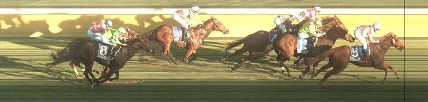 HAMILTON Race 10 No. 8 Ourlordofwar @ $4.60 (1.5 UNITS WIN)   Result : Unplaced at SP $6.50. Settled in second, however was off the bit on the turn chasing the lead and dropped out to finish midfield. Outcome -1.50 Units  HAMILTON Race 10 No. 9 Triguboff @ $4.80 (1.32 UNITS WIN)   Result : Unplaced at SP $4.80. Always out the back, never a winning hope. Outcome -1.50 Units.