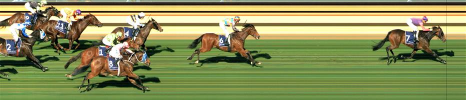 FLEMINGTON Race 2 No. 4 So Far Sokool @ $13 - watch price  Result: Non Qualifier - 3rd at SP $10.00