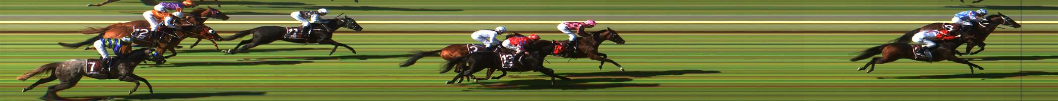 WODONGA Race 1 No. 7 Tormino @ $6 (1 UNIT WIN)  Result: Non Qualifier - Unplaced at SP $9.50
