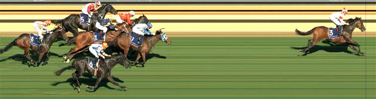 FLEMINGTON Race 4 No. 7 Junipal @ $12 - watch price   Result : Non Qualifier - 2nd at SP $12.00.