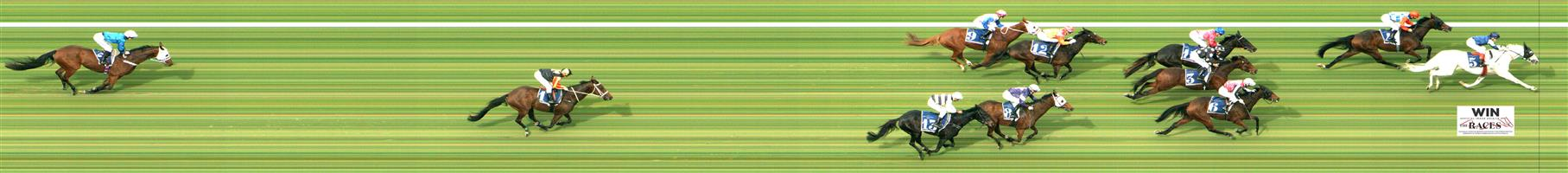 MORPHETTVILLE Race 3 No. 3 Chequered Flag @ $16 - watch price  Result: Non Qualifier - 4th at SP $21.00  MORPHETTVILLE Race 3 No. 4 Sopressa @ $10 - watch price  Result: Non Qualifier - 2nd at SP $14.00.  MORPHETTVILLE Race 3 No. 12 Cedar Grande @ $15 - watch price  Result: Non Qualifier - Unplaced at SP $20.00.  MORPHETTVILLE Race 3 No. 13 Future Score @ $5 (1.25 UNITS WIN)  Result: Non Qualifier - Unplaced at SP $8.50     IMAGE NOT AVAILABLE   DOOMBEN Race 8 No. 12 Kenedna @ $9 - watch price  Result: Non Qualifier - 1st at SP $10.00, Best Tote $11.40, Betfair $12.06.