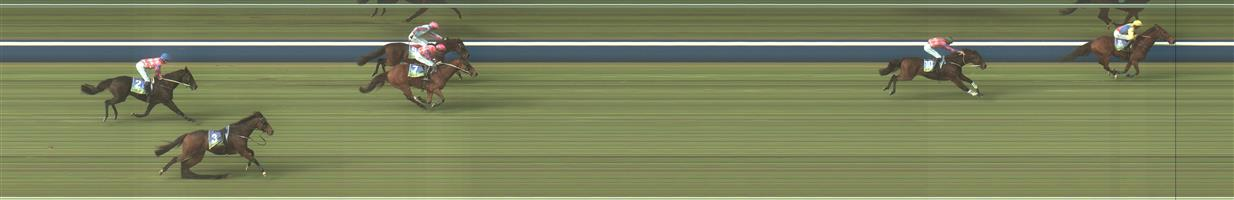 CASTERTON Race 1 No. 1 Big Bad Baz @ $6 (1 UNIT WIN) - NB: Hurdle race   Result : Unplaced at SP $6.00. Fell mid race when looking to stake its claim. Outcome -1.00 Unit  CASTERTON Race 1 No. 9 Truly High @ $5 (1.25 UNITS WIN) - NB Hurdle race   Result : 4th at SP $4.00. Caught up in the fall and lost momentum but was no match for the winner. Outcome -1.25 Units.