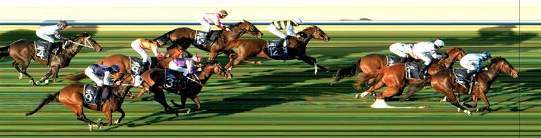 BENDIGO Race 7 No. 5 Chouxter @ 14 - watch price  Result: Non Qualifier - 1st at SP $13.00, Best Tote $13.50, Betfair $13.59.