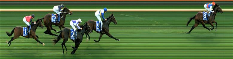 MOE Race 1 No. 13 Titan I Am @ $6 (1 UNIT WIN)  Result: Unplaced at SP $8.00. Midfield the majority of the race, never a winning threat. Outcome -1.00 Unit.