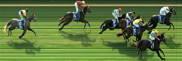 MOE Race 3 No. 5 Stinging Remark @ $30 - watch price   Result : Non Qualifier. 3rd at SP $31.00.