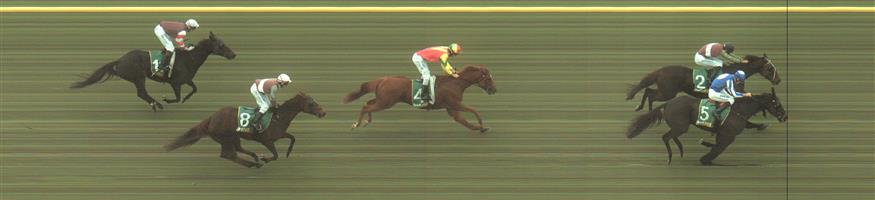 🏆🏆🏆GEELONG Race 1 No. 5 Navarro Lad @ $1.70 (1.5 UNITS WIN)  Result: 1st at SP $1.90, Best Tote $1.90, Betfair $2.26. Coming from the last part of the field and was on the chase from just prior to the turn and got the bob in on the line to salute. Outcome +2.55 Units.