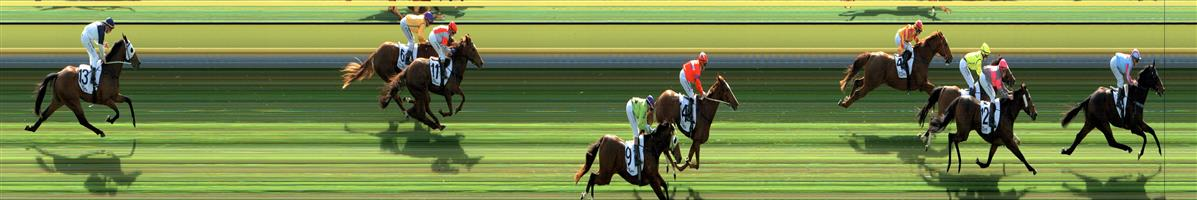 🏆🏆🏆WARRACKNABEAL Race 2 No. 5 Scarface Romeo @ $1.90 - (1.5 UNITS WIN)  Result: 1st at SP $2.15, Best Tote $2.40, Betfair $2.71. Settled midfield and made its move mid race going up three wide with cover to have a share of the lead on the turn and went on with it in the straight to score by about a length. Good ride, made the right race moves. Outcome +2.85 Units.  WARRACKNABEAL Race 2 No. 6 Calliandra Girl @ $11 - (0.5 UNIT WIN)  Result: Unplaced at SP $15.00. Settled in the lead but dropped out early in the straight to finish towards the tail of the field. Outcome -0.50 Units.  WARRACKNABEAL Race 2 No. 16 Sirius Deal @ $14 - (0.39 UNIT WIN)  Result: 3rd at SP $5.00. Nice market support. Coming from the last part of the field, was wide on the turn making its run but was never a winning threat always a fair bit behind the winner. Outcome -0.39 Units.