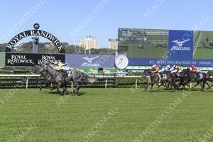 RANDWICK Race 3 No. 14 Wealthy Wolf @ $34 (0.16 UNIT WIN)  Result: Unplaced at SP $61.00. Settled towards the tail, a number of lengths from the lead. Always out the back, never a winning threat despite hitting the line well. Outcome -0.16 Units.     NO IMAGE AVAILABLE   EAGLE FARM Race 5 No. 4 Liten In My Veins @ $6.50 (0.91 UNIT WIN)  Result: Unplaced at SP $5.00. Settled in second, outside the leader. Unable to match the leader in the straight and dropped out of contention to finish midfield. Outcome -0.91 Units.