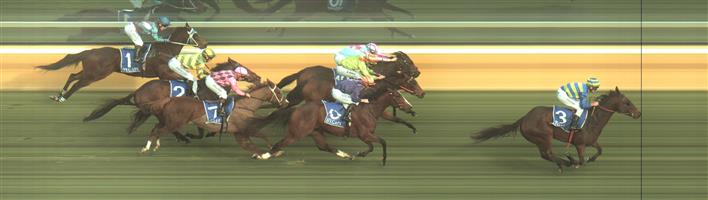 HAMILTON Race 4 No. 9 Regal Effort @ $7.50 (SBET Offer here)  Result: 4th at SP $6.50. Ran on strongly from the back but was edged out of the placings in a photo but never threatened the winner. Outcome -0.77 Units.