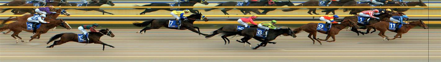 🏆🏆🏆🏆🏆🏆BALLARAT SYNTHET Race 4 No. 11 Raffine @ $6  Result: 1st at SP $5.50, Best Tote $6.10, Betfair $7.20. Settled off the leaders back and came off hells with about 200m to go on and score the win by about a neck. Outcome +6.00 Units.